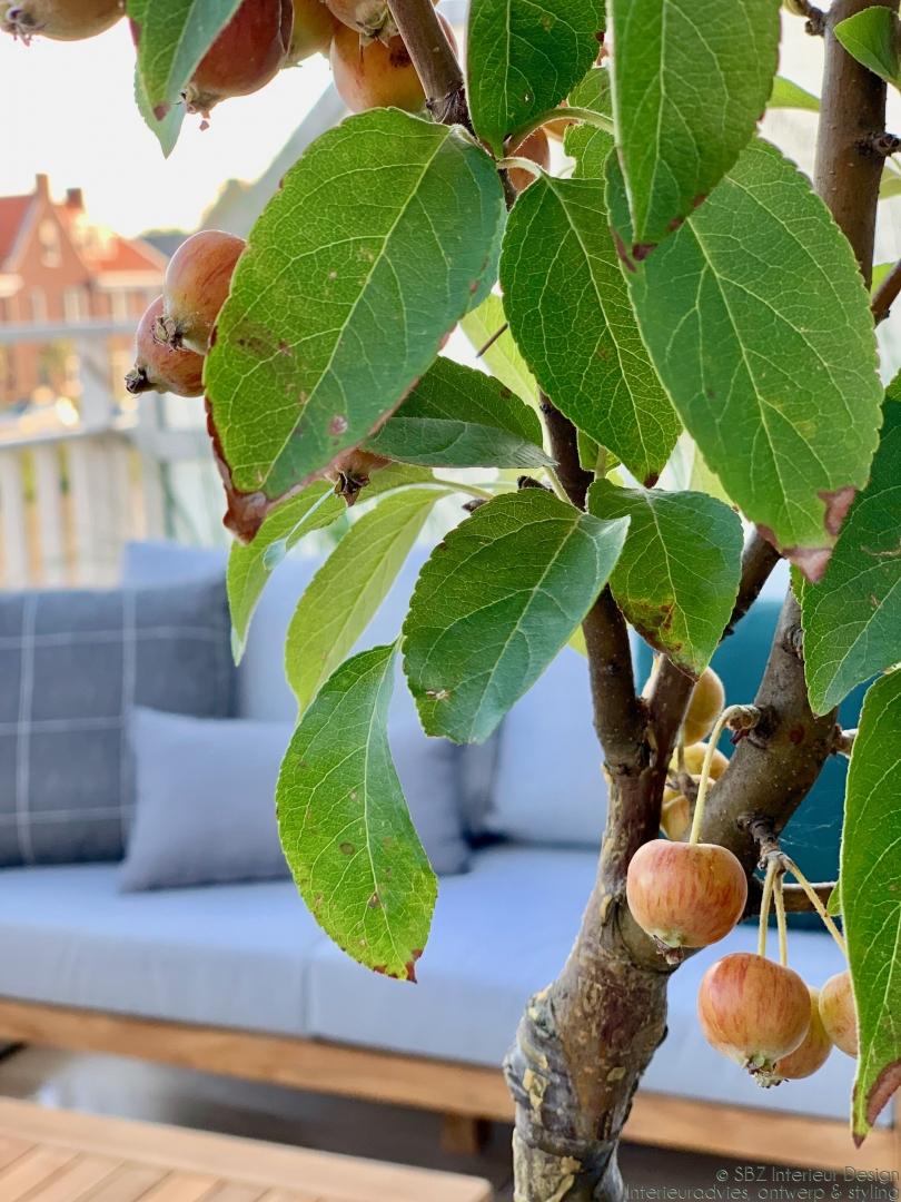 Ontwerp en interieur project balkon Ackerswoude Brinkrijk © SBZ Interieur Design advies – ontwerp- interieur realisatie en styling – sbzinterieurdesign.nl 70